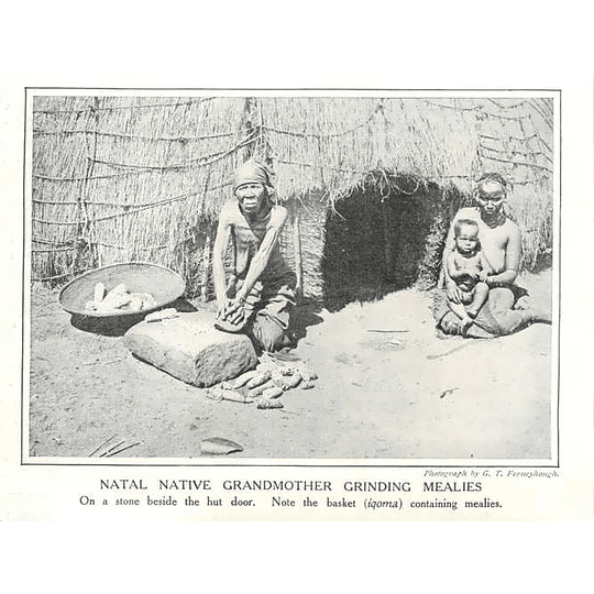 1910 Natal Native Grandmother Grinding Mealies