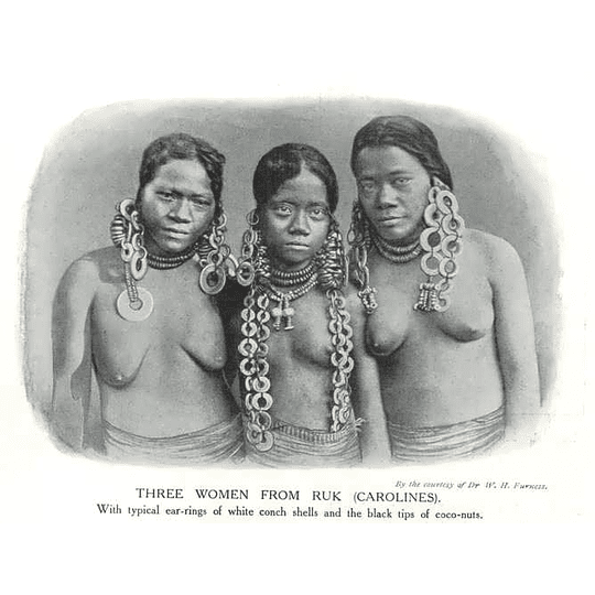 1910 Three Women From Ruk In The Carolines, Shell Earrings, Coconuts
