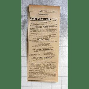 1900 Circus Of Varieties Auckland Road Cambridge Saxon Trio Nellie Sunderland