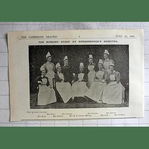 1900 The Nursing Staff Addenbrooke's Hospital,byles, Cureton, Hoare, Newman