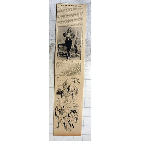 1900 Miss Anita Mayew At The Cambridge Circus, Oz Bushman Gib Sun