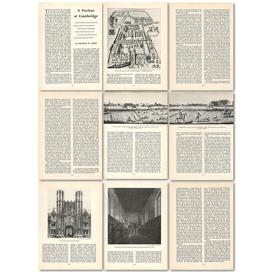 1963 Simonds D'ewes, The Puritans View Of University Life At Cambridge , Article