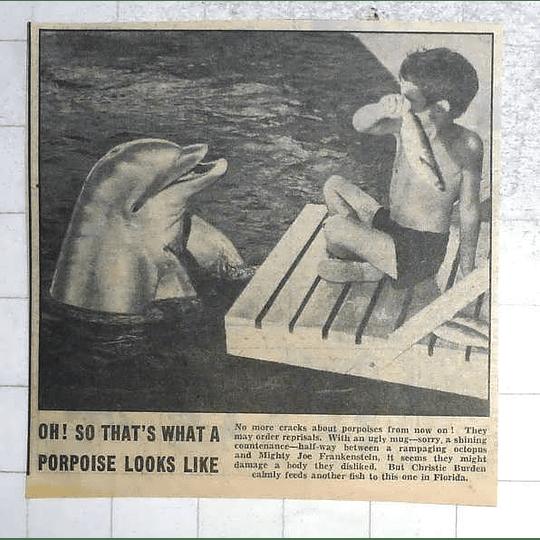 1950 Christie Burden Calmly Feeding A Fish To Florida Dolphin