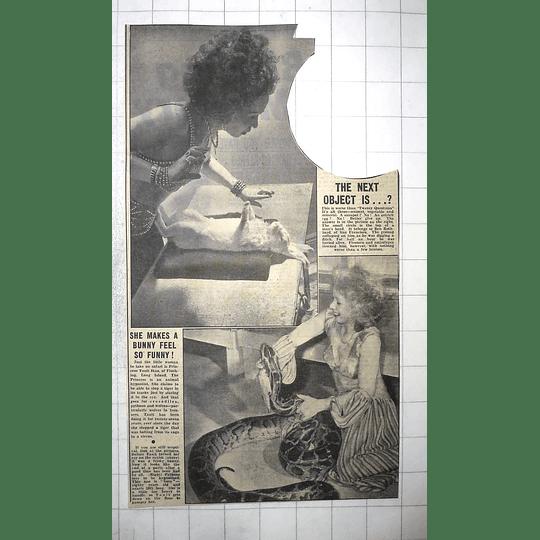 1950 Princess Yanit Ikao Hypnotising Rabbit, And Susie The Python