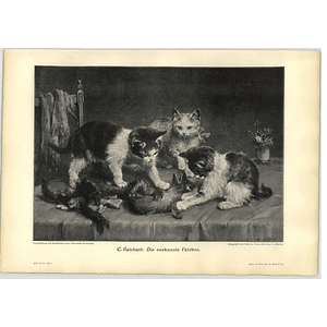 1902 C Reichert ~ 3 Kittens Palying With A Ferret Artwork