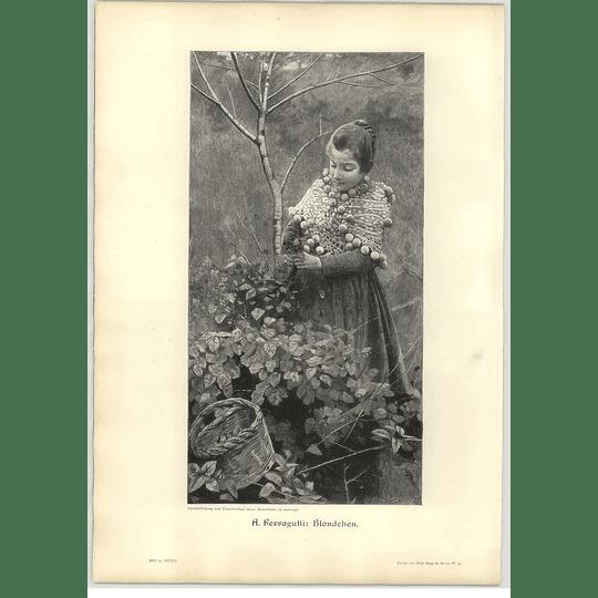 1902 A Ferragutti ~ Blonde Artwork