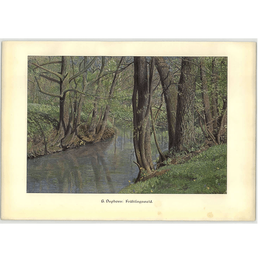 1902 H Duphorn ~ Springtime Woods Artwork