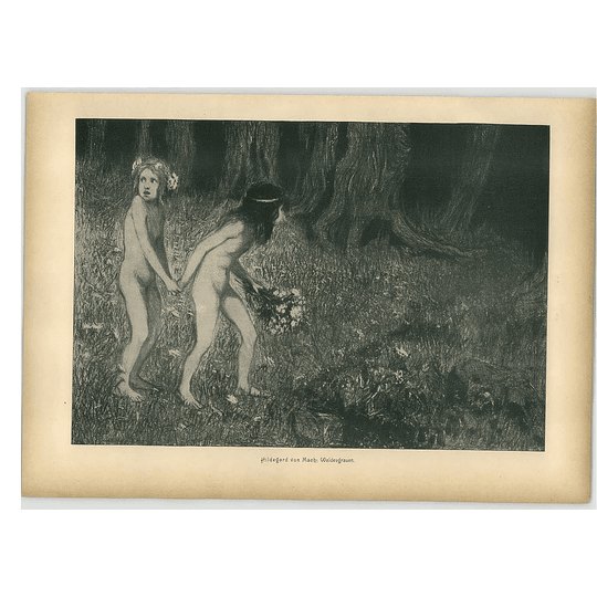 1902 Hildegard Von Mach ~ Forest Gray Artwork