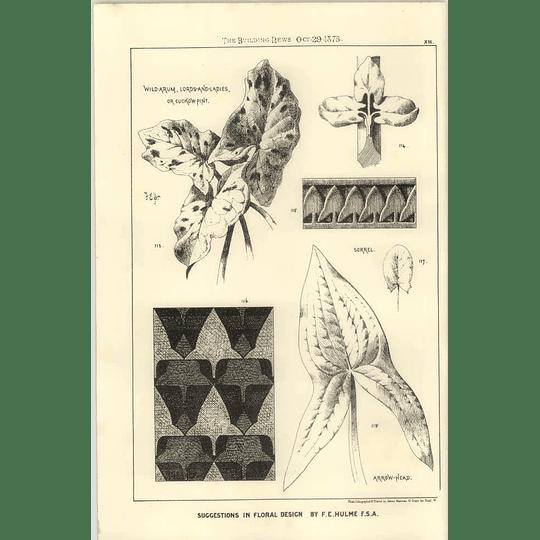 1875 Floral Design Wild Arum, Arrowhead, Sorrel, F E Hulme
