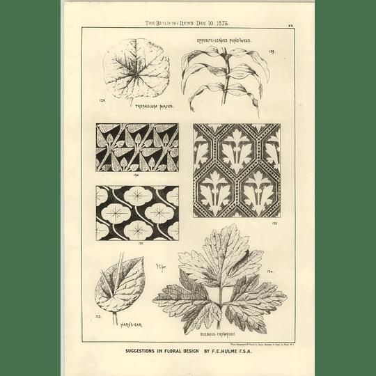 1875 Pondweed, Crawford, Floral Design Ideas F E Hulme