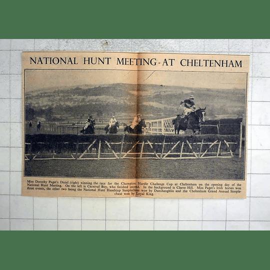 1946 Cheltenham Champion Hurdle Challenge Cup, Dorothy Paget Distel