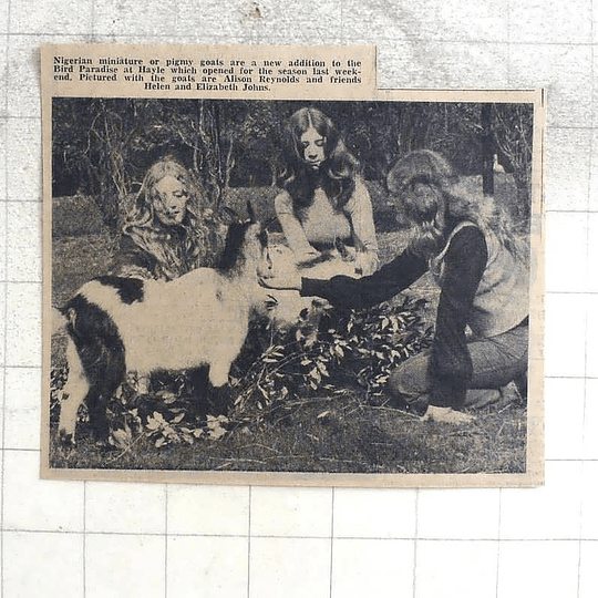 1974 Alison Reynolds With Helen And Elizabeth Johns At Bird Paradise, Hayle