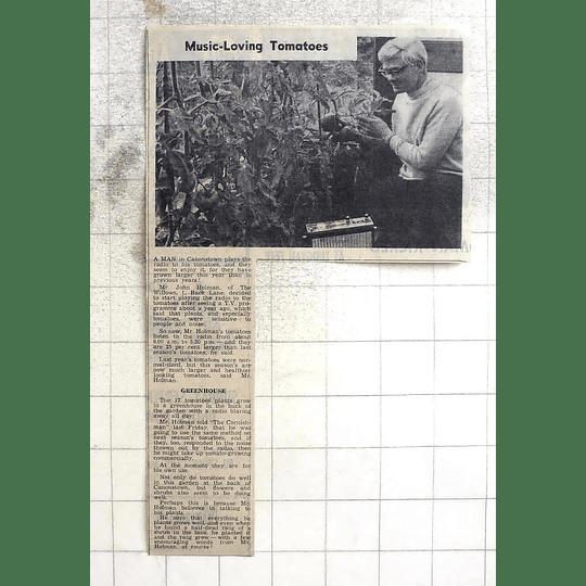 1974 John Holman, Canonstown Has Music Loving Tomatoes