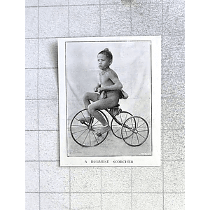1897 Enthusiastic Burmese Scorcher On Tricycle