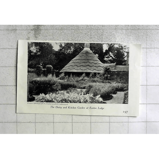 1908 Dairy And Kitchen Garden At Easton Lodge