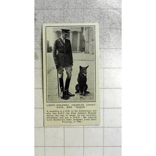 1922 Lieutenant-colonel Charles Grant Dso With Dso Rajah
