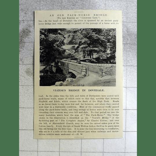 1918 Old Packhorse Bridge In Dovedale