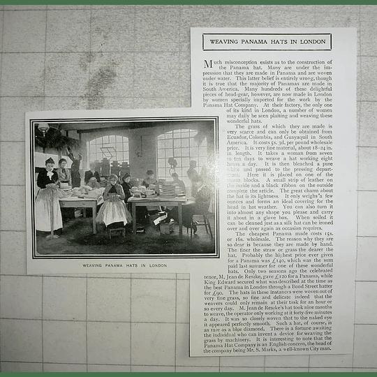 1903 Weaving Panama Hats In London, Mr S Marks
