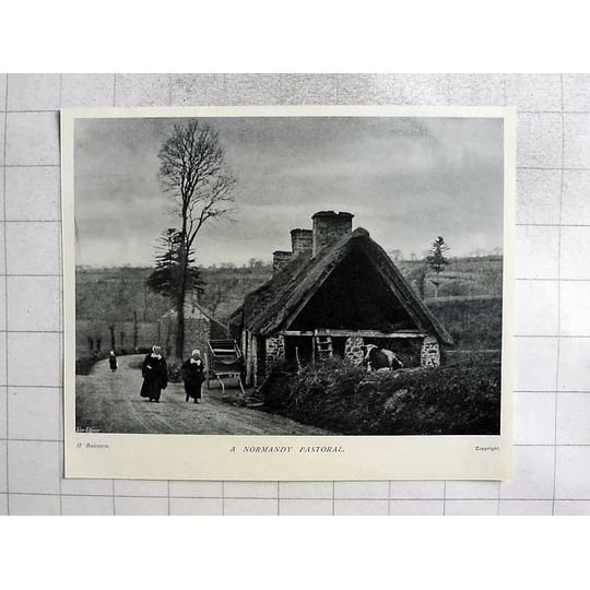 1905 Country Road Scene In Rural Normandy
