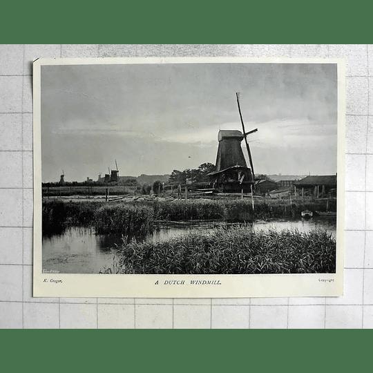 1905 Dutch Windmills, Photographs K Gregor