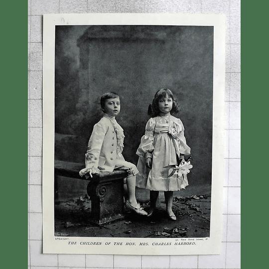 1905 The Children Of Mrs Charles Harbord