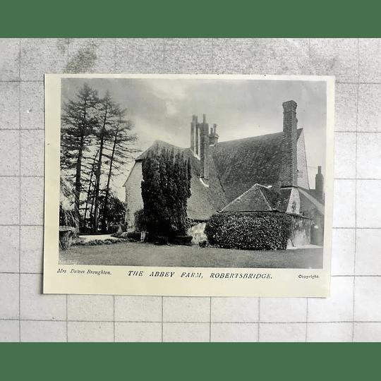 1905 The Abbey Farm At Robertsbridge From The Garden