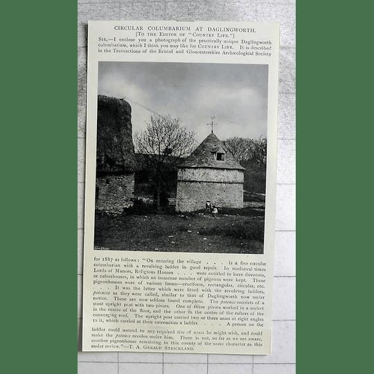 1905 Circular: Columbarium At Danglingworth, Ta Gerald Strickland