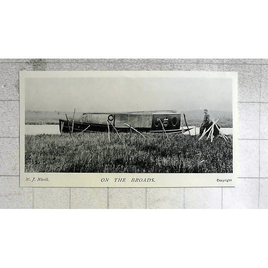1905 Photograph Of Life On The Norfolk Broads By Mj Nicoll