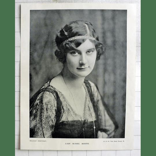 1918 Lady Muriel Bertie, Photo Portrait By Malcolm Arbuthnot