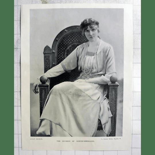 1918 Photo Portrait Of The Duchess Of Northumberland