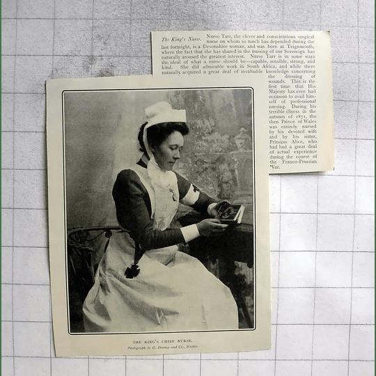 1902 The King's Chief Nurse Tarr, Born Teignmouth Devon