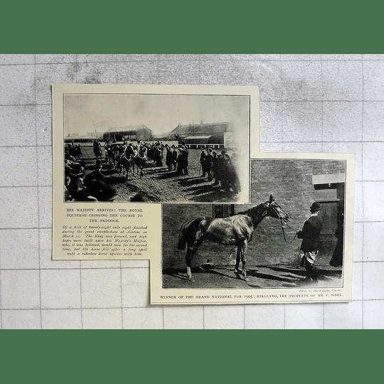 1910 Winner Of Grand National, Kirkland, Mr F Bibby, Royal Arrival
