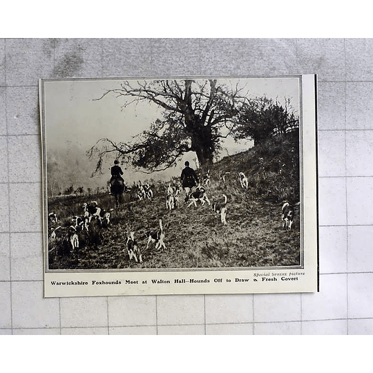 1910 Warwickshire Foxhounds Meet At Walton Hall