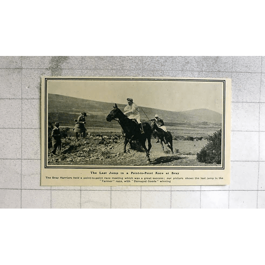 1919 The Last Jump In A Point-to-point Race At Bray, Damaged Goods Wins