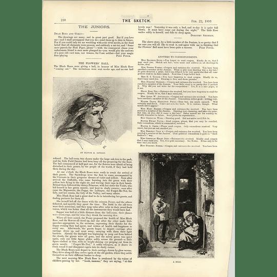 1893 Parliament House Dublin Act Of Union Elinor M Dowson