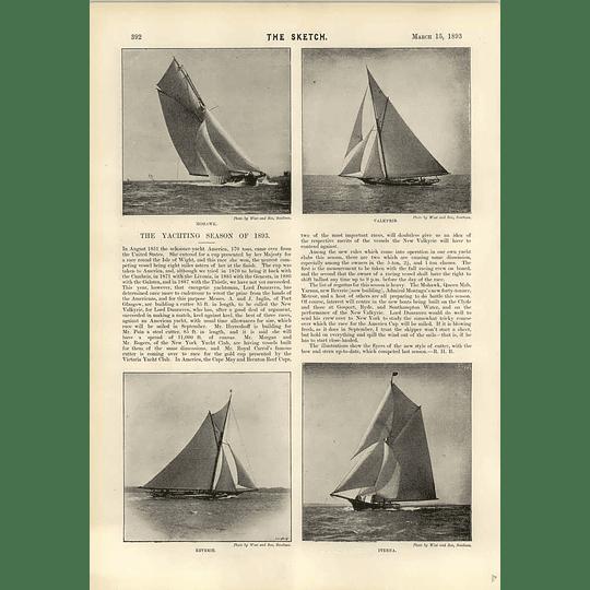 1893 Yachting Season Mohawk Valkyrie Revelry Iverna