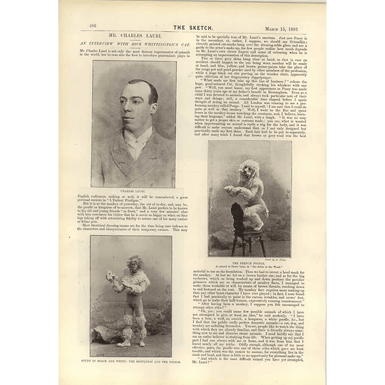 1893 Mr Charles Lauri Poodle Impersonator Hottentot Dick Whittingtons Cat