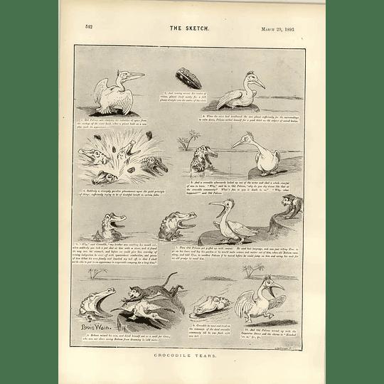 1893 Dudley Hardy Astronomy Personification Louis Wain Crocodile Tears