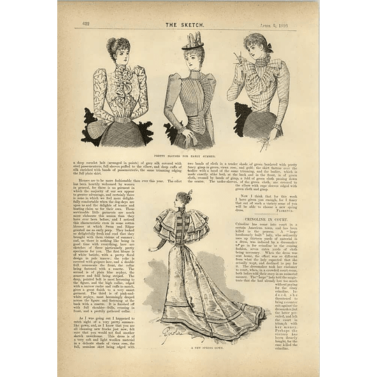 1893 Pretty Blouses Smart Costumes And A New Spring Gown