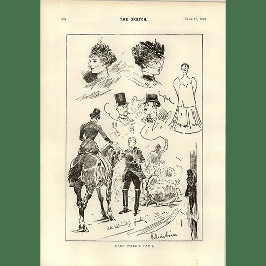1893 Last Week In Paris With Lebandy's Pack Villedebois