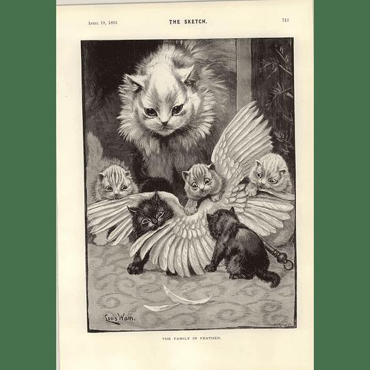 1893 Louis Wain Superb Illustration Cat Family In Feather John Bull Joke