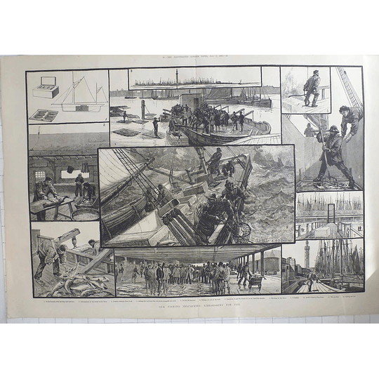 1883 Line Fishing For Cod, Grimsby Fishing Industry