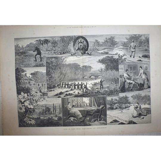 1883 Sport In North Devon, Trout Fishing And Otter Hunting