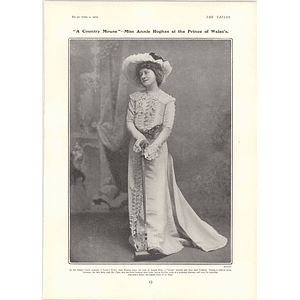 1902 Annie Hughes Country Mouse Cw Somerset Miss May Dark