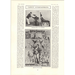 1902 Woodward's Performing Seals And Nita Graciella Trained Parrots