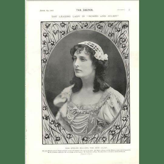 1905 Miss Evelyn Millard New Juliet