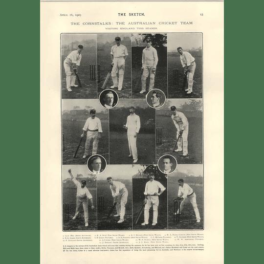 1905 The Cornstalks Australian Cricket Team Gregory Hopkins Armstrong Trumper