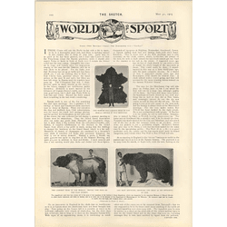 1905 John D Rockefeller New Motorcar Lakewood Largest Bear In The World Andrew Stone Expedition