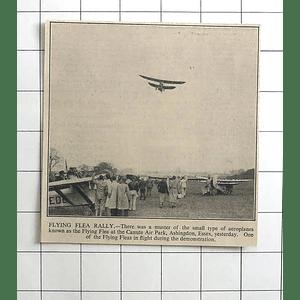 1936 Flying Flea Rally Canute Air Park Ashingdon Essex