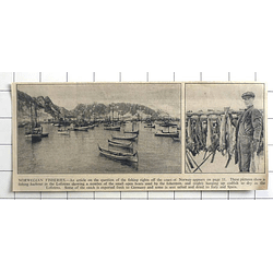 1936 Norwegian Fishing Harbour Lofotens, Hanging Up Codfish For Export